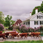 Inn at Valley Farms B&B, Cottages and Vacation Farmhouse
