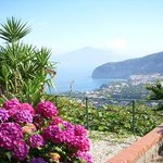 Villa Monica B&B Sorrento