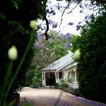 Welcome to Bangalow Guesthouse