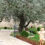 Φωτογραφία: Rosary Convent Guest House and Hostel