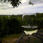 Bowers Harbor Vineyard