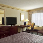 The Stay Inn
