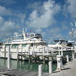 Foto de Seaspray Resort & Marina
