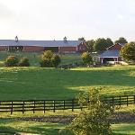  A horse ranch and rolling hills are across the road from us.