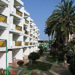 Photo de Apartamentos El Palmar