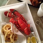 Jazzys MAINELY Lobster & Seafood