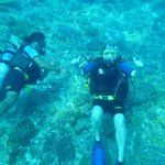 Big Blue Scuba Diving