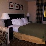 Foto de Holiday Inn Express Hotel & Suites Sumner