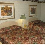 Standard Room -OpenTravel Alliance - Guest Room-
