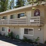 Photo of Cinnamon Bear Inn