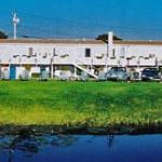 Sea Whale Motel
