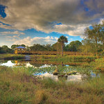 Conservancy of Southwest Florida