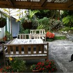 Foto de The Brown Kiwi Travellers Hostel