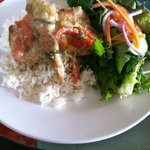 mahi in green curry w rice and mixed greens