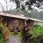 Our cabin with view of jungle, flowers, and birds