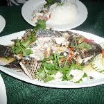 steamed fish for dinner at hotel