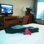 Foto Hampton Inn Quakertown
