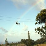Northshore Zipline Co.