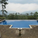 Infinity pool at Lavender House