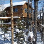 Stepping Stone Cabins Bed & Breakfast
