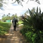 Ulua Beach dive site access easy with bathrooms nearby