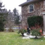 panorama shot of the back yard - Feb 2012