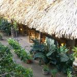 Photo de Jungle Huts Resort