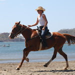 Casagua Horses Tours
