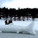  my friends with a huge snow fish some Ice fishers made!