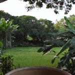 Photo de Diamond Head Bed And Breakfast
