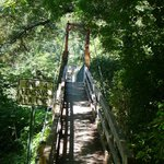 Kinzel Springs Swinging Bridge