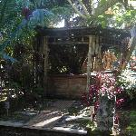 Foto de Coconut Cottage Bed & Breakfast