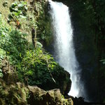Costa Rica Delights Day Tours