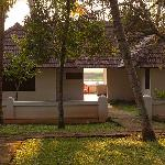  the ayurvedic spa