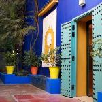  garden Majorelle