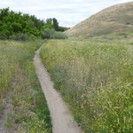 Ridge to River Trail System