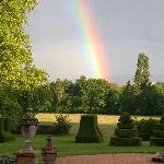 Rainbow over the topiary