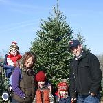 150 Acre Family Christmas Tree Farm