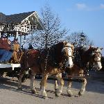 Horse Drawn Wagons at Christmastime (See schedule)