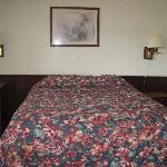 One Bed-