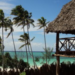 Baby Bush Lodge Zanzibar - Kiwengwa Viewの写真