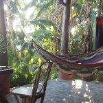 Open Spaces with Great Hammocks