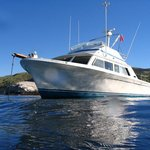 Seacret Charters - Day Tours