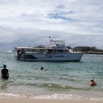 Reef Ryder Island Cruise Gold Coast