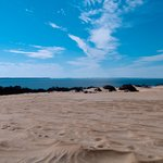 Jockey's Ridge State Park