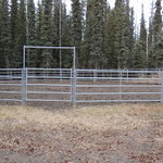 the round pen for our horse guests