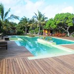 The stunning pool and deck area - take a look around!