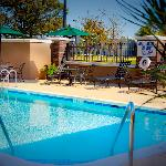 Enjoy our Salt Water Pool Late Spring through Summer