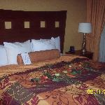 Photo de Embassy Suites Hotel St. Louis/St. Charles