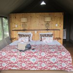 Foto Wilderness Adventures Banoka Bush Camp